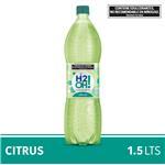 Agua Saborizada Con Gas H2oh!  Citrus Botella 1.5 L