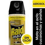Insecticida RAID Mata Cucaracha Y Arañas Aer 390 CC